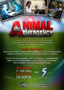 Animal Emergency_Flyer_Portrait_15012014